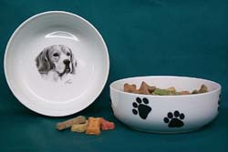 Beagle Pet Bowl
