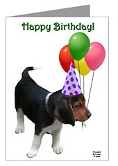 Beagle Puppy Happy Birthday