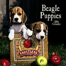 Beagle Puppies Calendar 2007