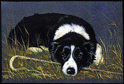Border Collie Blanket