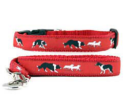 Border Collie Collar and Leash