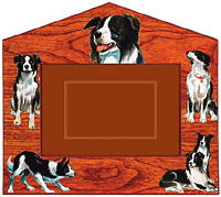 Border Collie Picture Frame