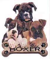 boxer dog sweasts and tees