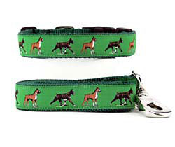 boxer collar and leash