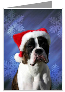 boxer dog christmas cards