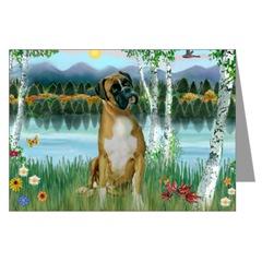 Boxr dog