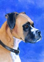 boxer dog flag