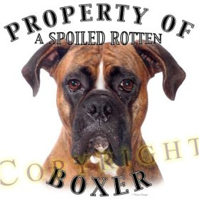 Spoiled Rotten Boxer dog Pillow
