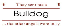 bulldog apparel