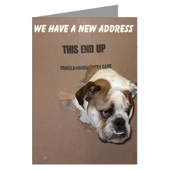 English Bulldog New Address