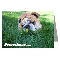 English Bulldogs Wisdom