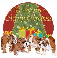 bulldog christmas cards and decor