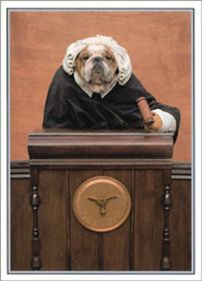 His Honor English Bulldog Anniversary Card