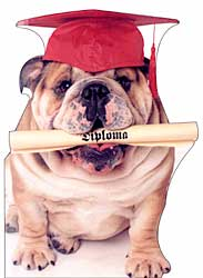 Die Cut Bulldog Graduation Card