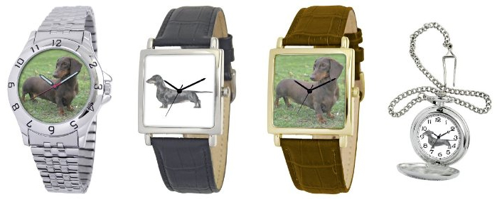 American Kennel Dachshund Watch