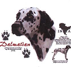 Dalmatian Tees