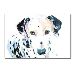 Riley the Dalmatian