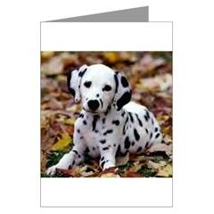 Dalmatian Puppy Dog