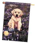 golden retriever puppy flag