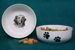 golden retriever pet bowl