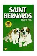 saintbernard dog