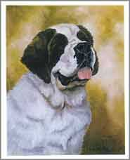 St Bernard Head Study Notecards