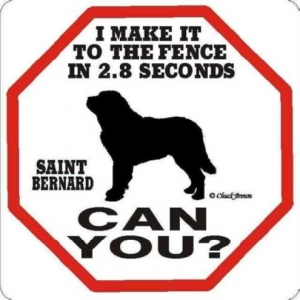 Saint Bernard 2.8 Seconds Sign