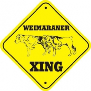 Weimaraner Crossing Dog Sign