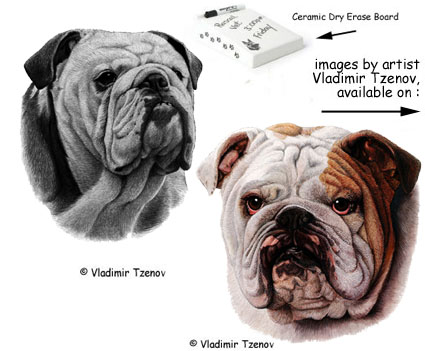 The Bulldog Shop - misc. gifts and collectibles