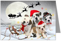 English Bulldog Christmas Cards, Holiday & X-Mas Ornaments