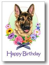 sretan rođendan njemački Enco Crveni Mayestoso   njemački ovčar sretan rođendan njemački